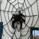 2011-10-25_16-40-18_643-20111026175234.JPG