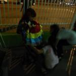 DSC01805_640x480_2012-11-27-13-47-59.jpg