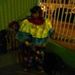 DSC01809_360x480_2012-11-27-13-48-01.jpg