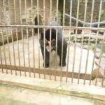 Zoo_040_2012-12-04-12-14-30.jpg