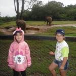 Zoo_052_2012-12-04-12-14-46.jpg