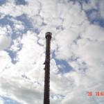 beto-carrero-17-20090601175724.JPG