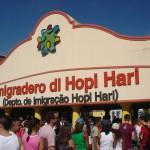 hopi-hari-4-20090601180011.JPG